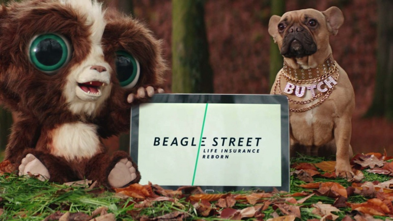 Beagle Life Insurance >> Finish Vfx Coins For Beagle Street Life Insurance The